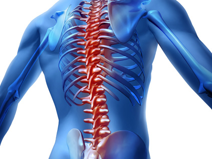 Spinal Adjustments | Islip Chiropractic East Islip, NY